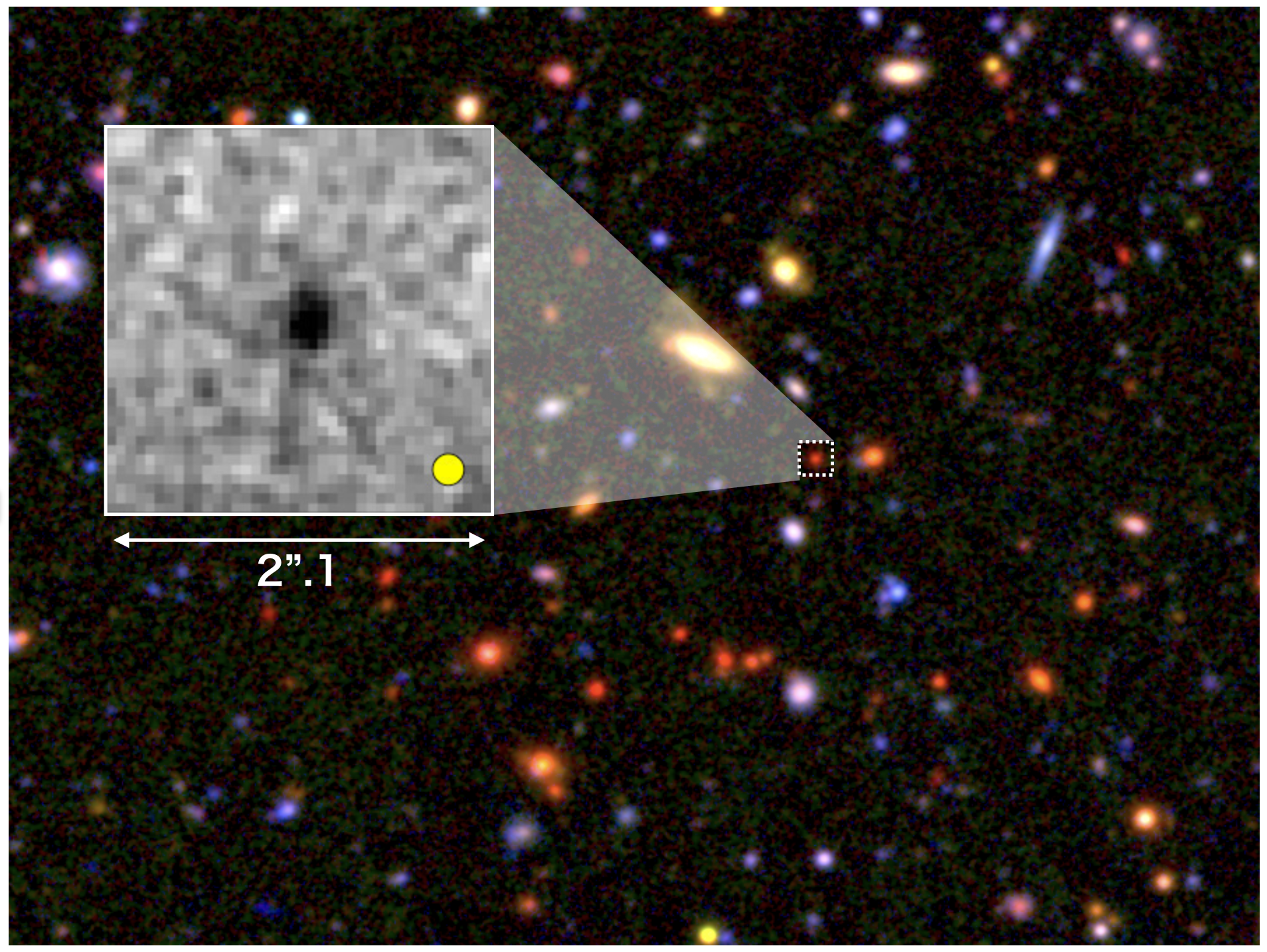 Seeds of Giant Galaxies formed in the Early Universe Figure1