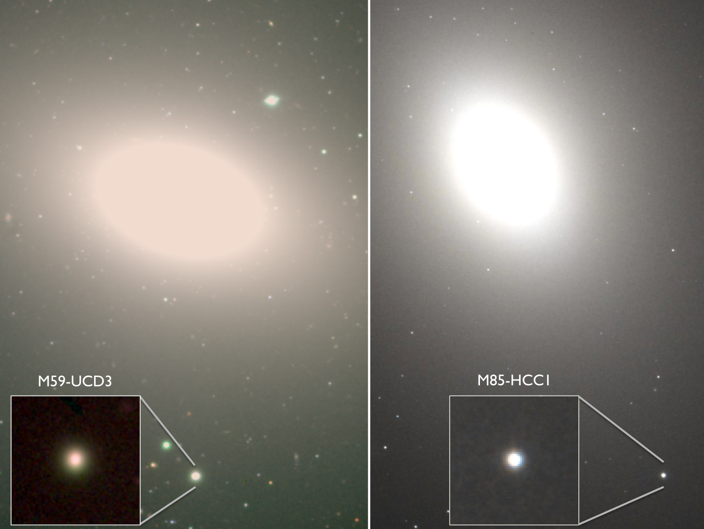 Hiding in Plain Sight: Undergraduates Discover the Densest Galaxies Known Figure1