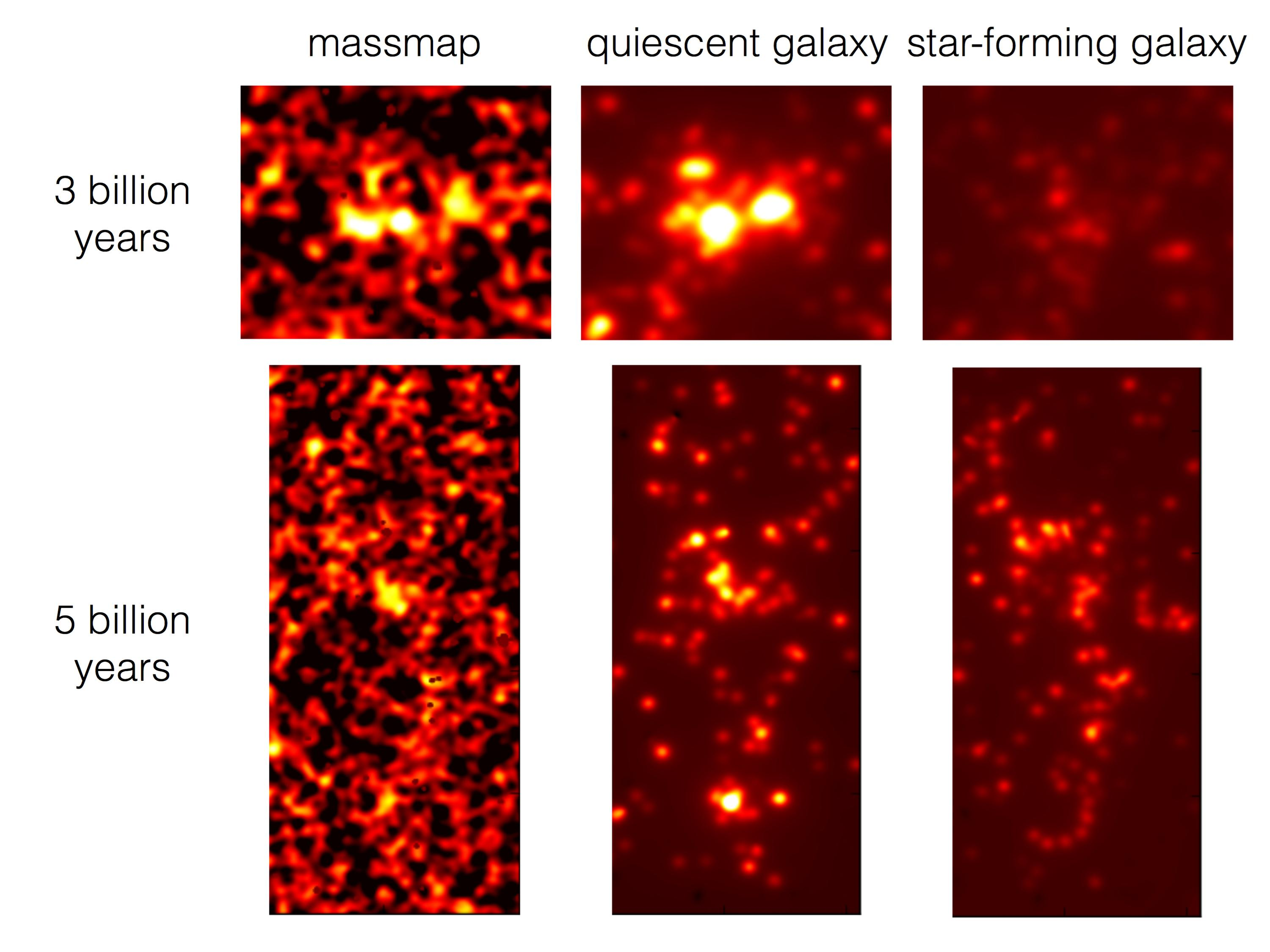 Tracing the Cosmic Web with Star-forming Galaxies in the Distant Universe Figure4