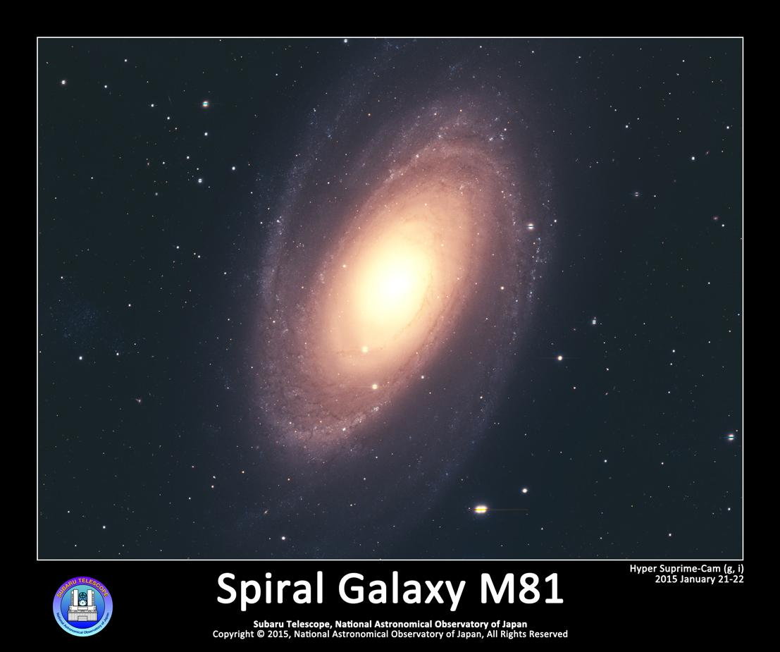 渦巻銀河 M81 | すばるギャラリー | すばる望遠鏡