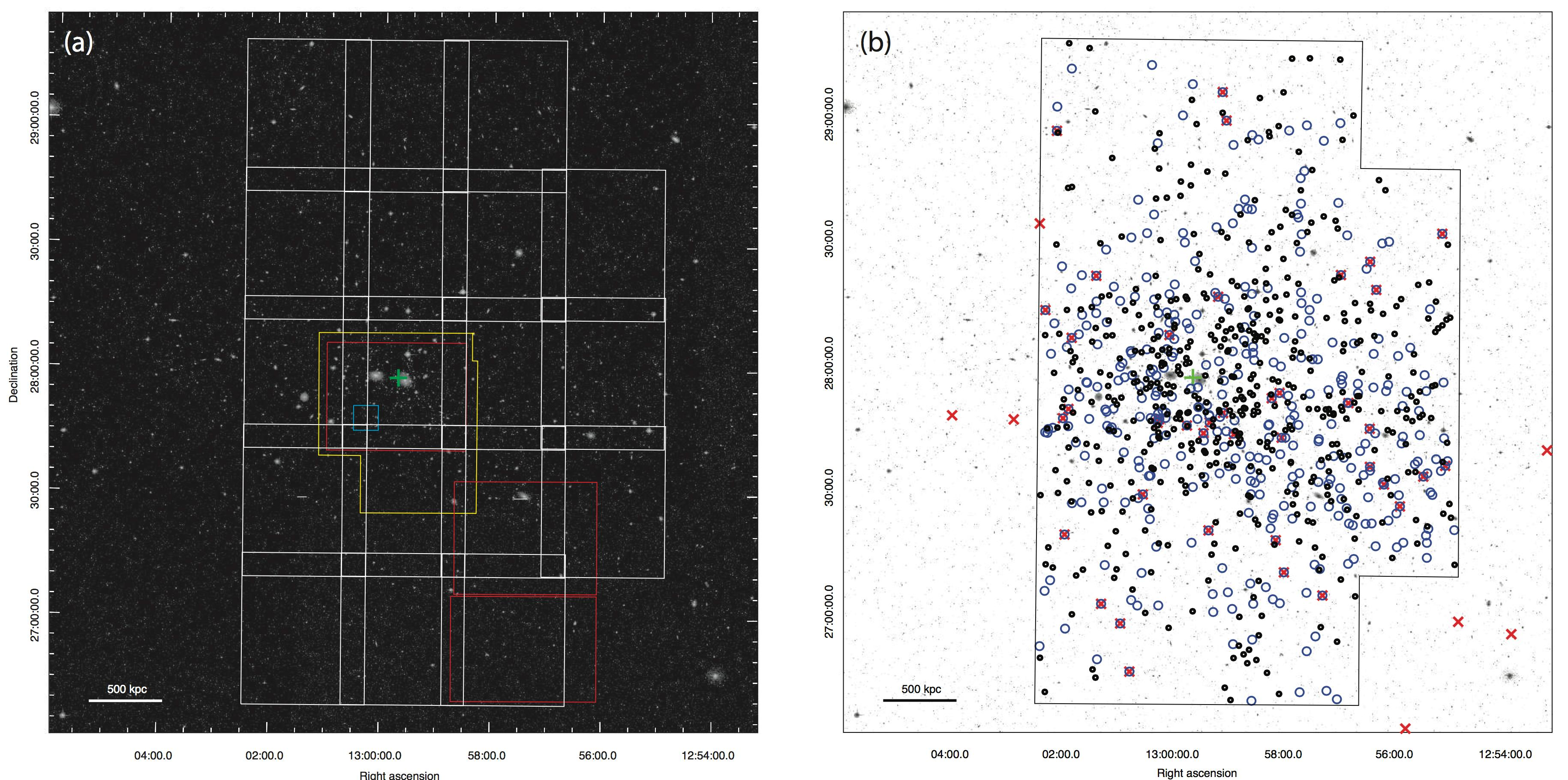 Astronomers Discover More than 800 Dark Galaxies in the Famous Coma Cluster Figure2