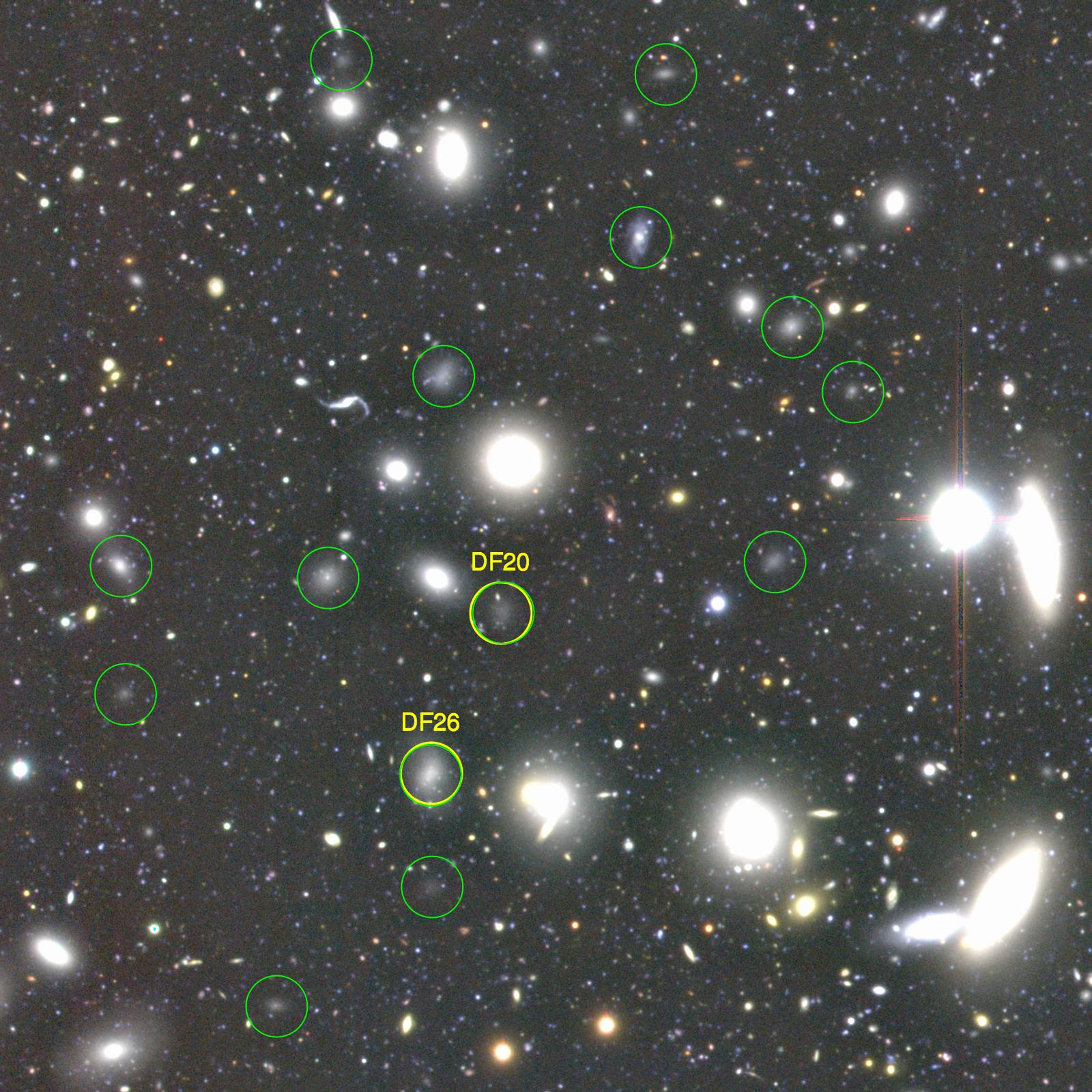 Astronomers Discover More than 800 Dark Galaxies in the Famous Coma Cluster Figure1
